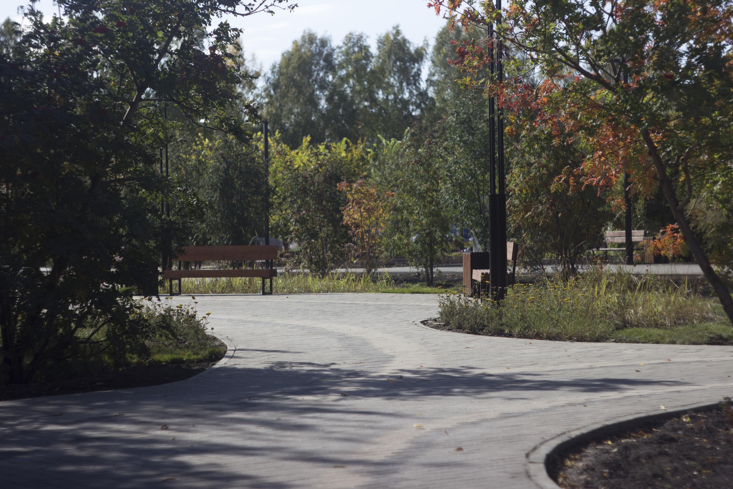Раньше здесь тоже были посажены деревья и цветы, стояли скамейки, но они были ветхими