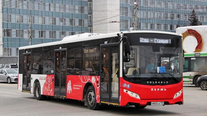 Администрация Перми ищет автобусных перевозчиков на 5 лет
