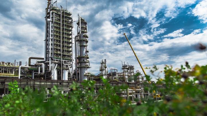 От Мексики до Индии: продукцию завода из Тольятти ждут по всему миру