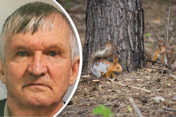 Пожилой мужчина ушёл за грибами 9 сентября. Теперь его ищут с дронами и тепловизорами