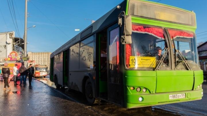 В Перми всю неделю общественный транспорт будет ходить по расписанию выходного дня