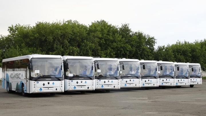 Власти Новокузнецка заплатят компании из Петербурга больше 16 миллиардов за перевозку пассажиров