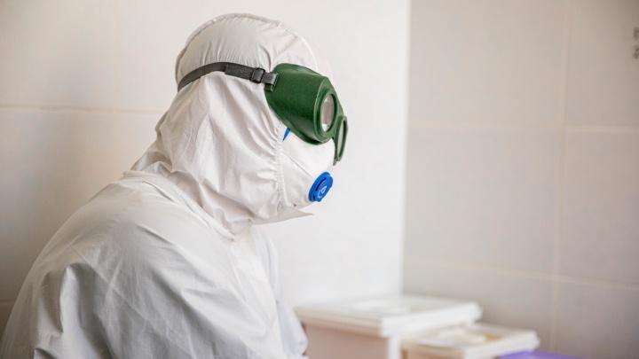 Полпред о жизни после майских праздников и новый рекорд по количеству заболевших: коронавирус за сутки