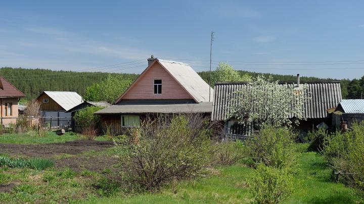 Губернатор разрешил открыть магазины для садоводов и плодопитомники. Адреса тех, кто начал работать