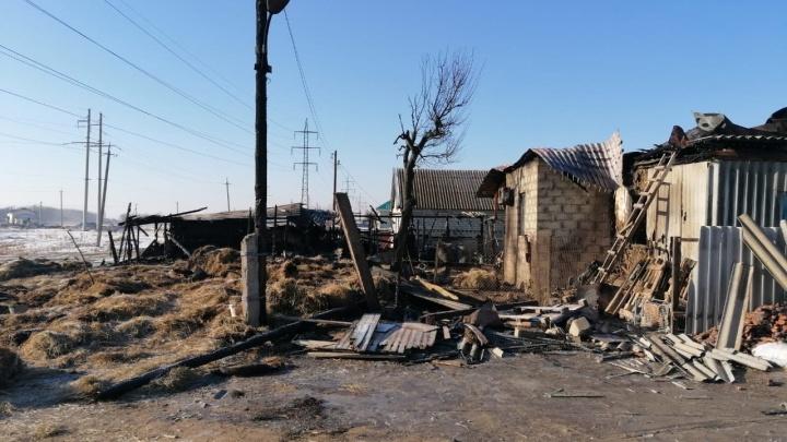 «Это было зрелище не для слабонервных»: под Волгоградом огонь уничтожил дом семьи с 9 детьми