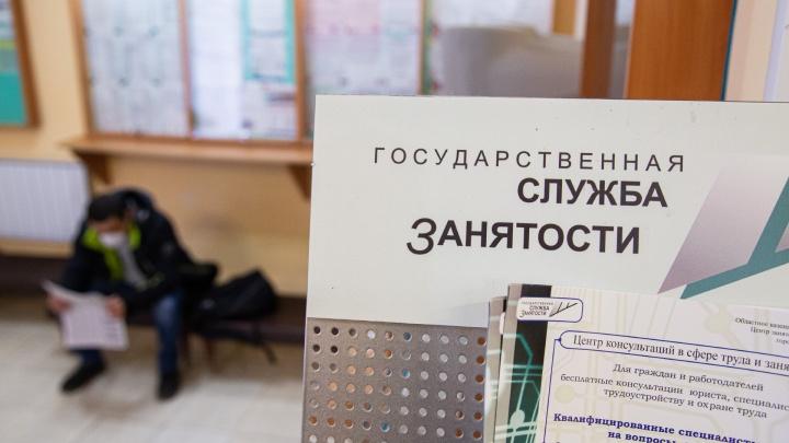 «Обещали 15 тысяч — дали 175 рублей»: в центре занятости объяснили, как начисляют пособие безработным