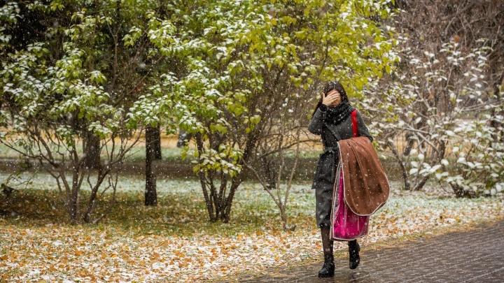 Дождливо или снежно? Изучаем, каким непредсказуемым будет октябрь в Новосибирске