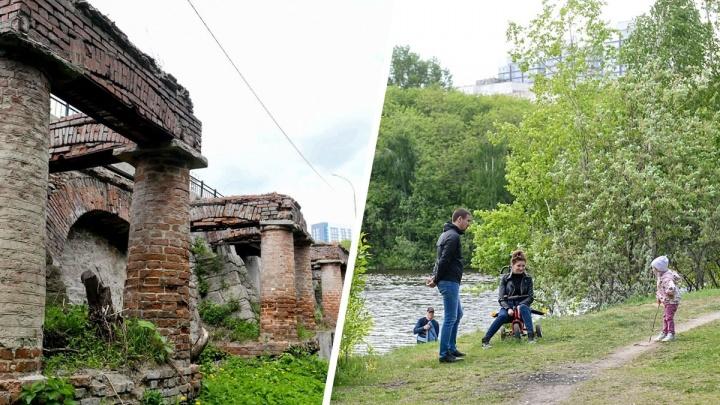 Старинная плотина, «джунгли» и парк у реки: как выбраться в дикую природу, не покидая центр города
