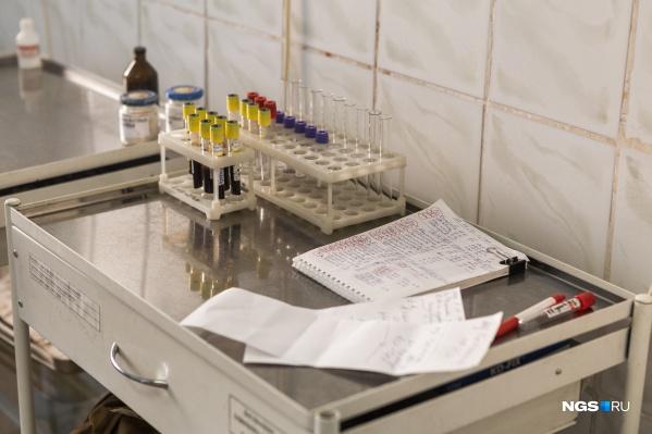 Всего в Новосибирской области провели 210 157 тестов на коронавирус