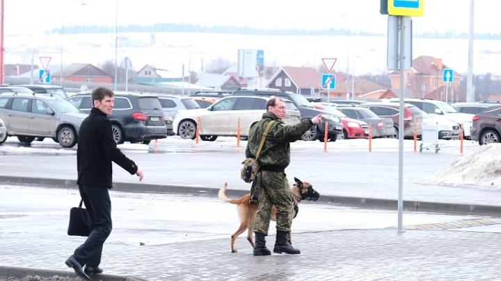«Самолет проверяют кинологи»: в пермском аэропорту рассказали об экстренной посадке лайнера S7