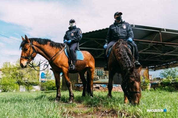 Для полицейских маски теперь обязательны
