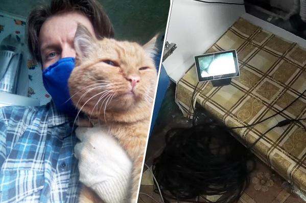 Кота спасали два часа