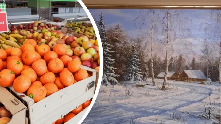 Красноярскому художнику за пейзаж маслом заплатили тонной мандаринов