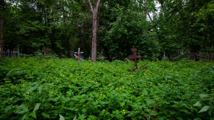 Искал сигареты: житель Ишима разломал несколько могил на городском кладбище