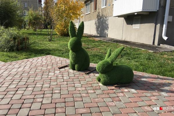Пропавший заяц на место пока не вернулся