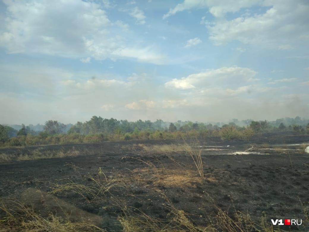 Пламя быстро распространялось по сухой траве