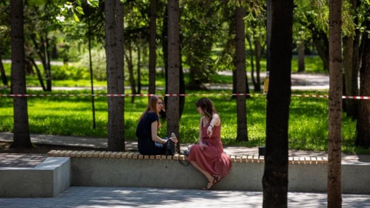 Запреты сняты: кемеровчанам разрешили свободно гулять по паркам и скверам