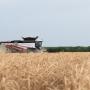 Депутаты ЗСРО попросили у Госдумы денег на сельхозтехнику. Совладелец «Ростсельмаша» объясняет зачем