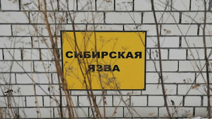 У скотомогильника с сибирской язвой на юге Екатеринбурга предложили построить коттеджный поселок