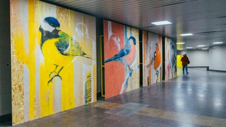 Омские художники за четыре часа нарисовали в метропереходе четыре картины с птицами