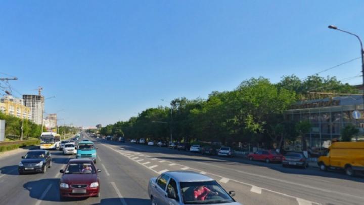 Кованые автомобили, тротуарная плитка и можжевельник: в Волгограде благоустроят проспект Жукова