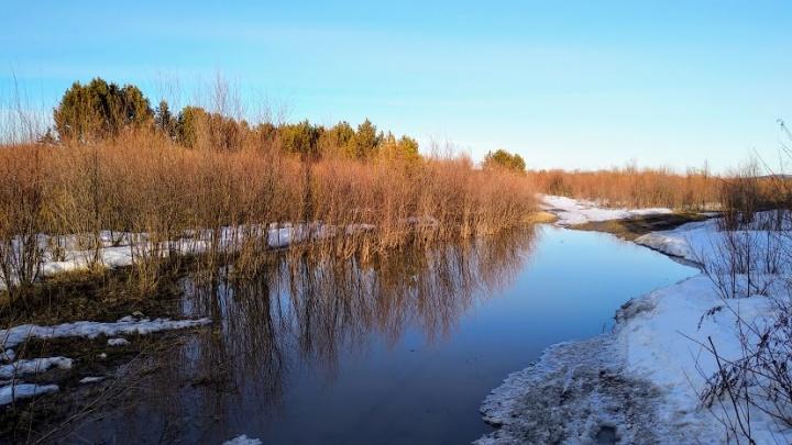 Потепление до +20 и снег с дождем: синоптики рассказали, каким будет апрель