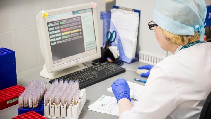 Рекордное количество новосибирцев заболели коронавирусом за последние сутки