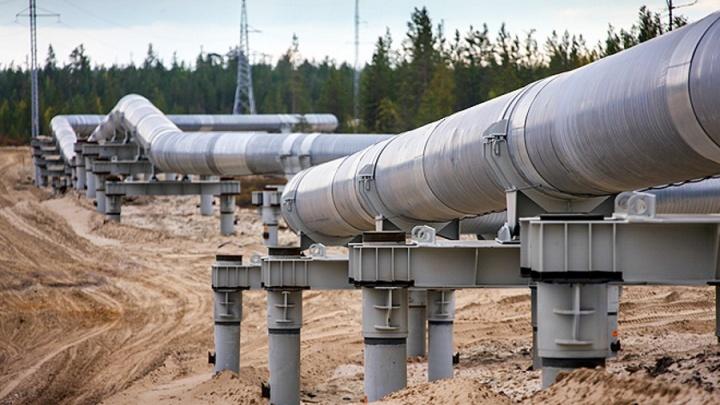В Прикамье при замене трубопровода разлилась нефть: возбуждено уголовное дело о порче земли