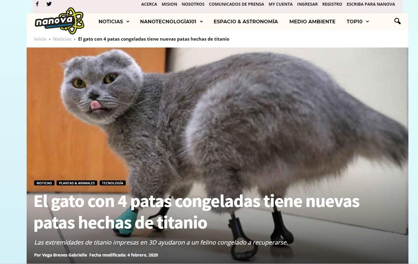 Статьи о кошке на протезах выходят в самых разных изданиях уже полгода