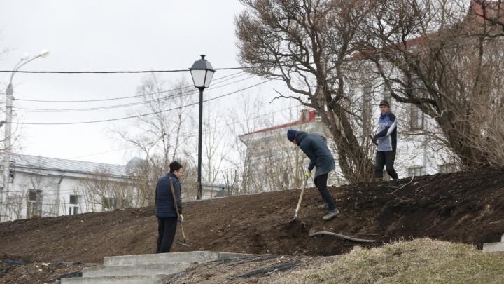 «Ямы стали чистыми и ухоженными»: изменился ли Архангельск после уборки — отвечают читатели 29.RU