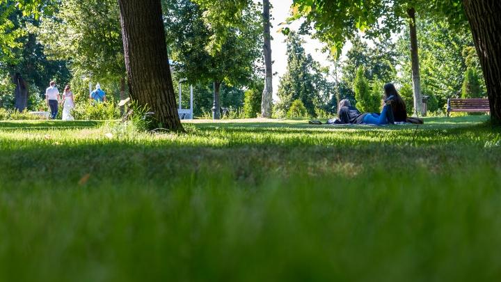 В Тольятти вновь собираются закрыть для посещения парки, набережные и скверы