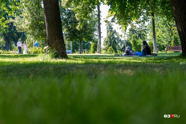 Тольяттинцы могут остаться без парков в разгар лета