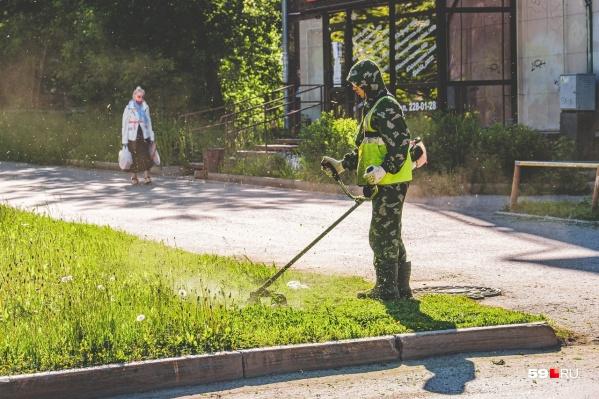 Гулять можно будет во всех парках, кроме березниковских