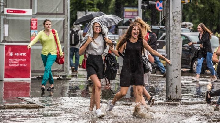 Какой август нас ждет — жаркий или дождливый? Изучаем прогноз погоды для Новосибирска