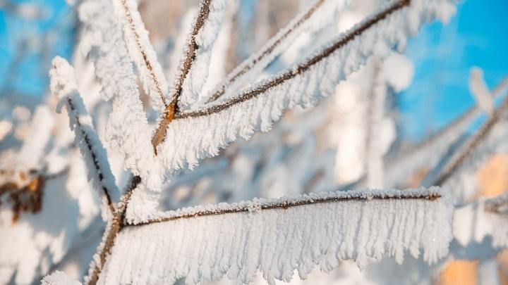 В Кузбасс вернутся морозы: синоптики рассказали о погоде в понедельник