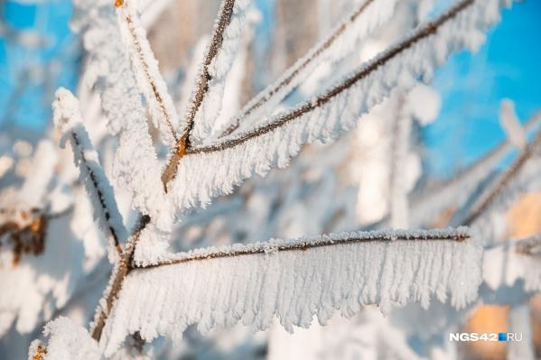 В регионе будут снег и метели