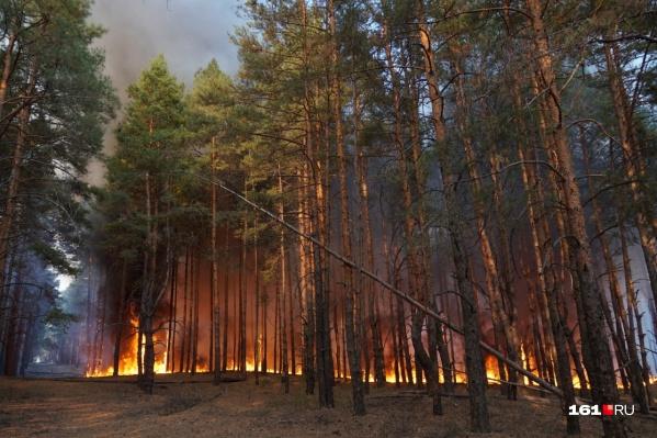Пожар начался 2 сентября из-за короткого замыкания