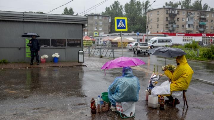 «Ливни, шквалистый ветер и похолодание»: в центре России резко испортится погода
