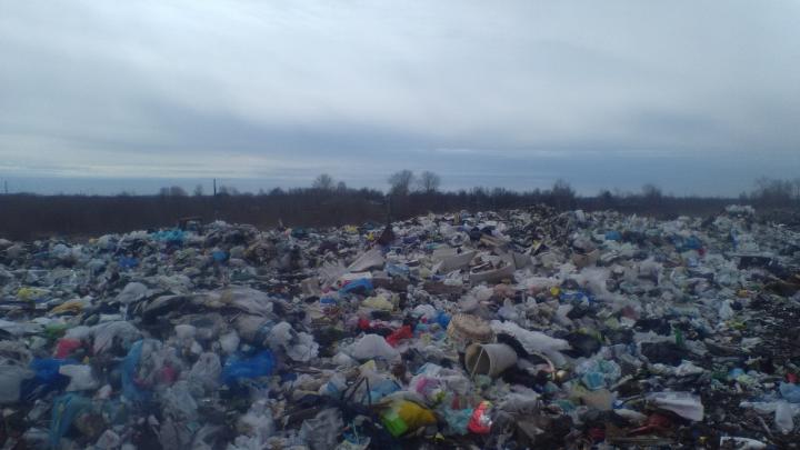 В правительстве области сообщили, что горы мусора с острова Бревенник вывезут только после ледостава