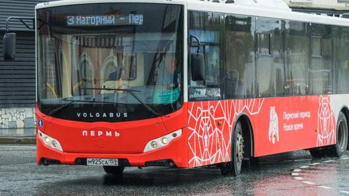 Большие автобусы вновь станут ходить до Перми I в начале марта