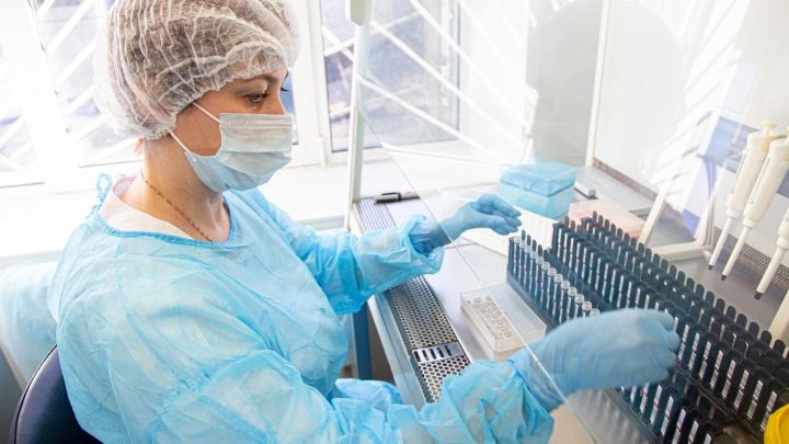 Ситуация с коронавирусом в Прикамье на 5 июля: COVID-19 выявили еще у 53 человек