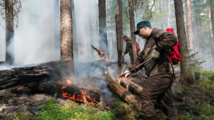Тушить пожар в заповеднике «Денежкин Камень» отправили еще несколько десятков человек