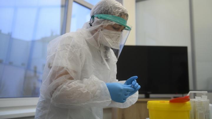 В Свердловской области 341 новый случай заражения COVID-19