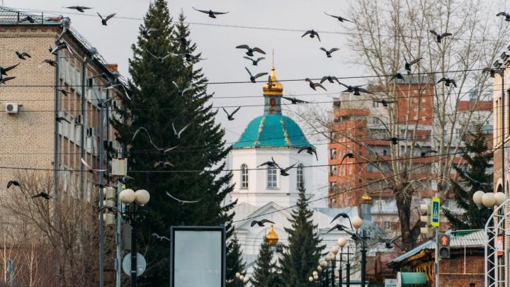 Омский священник подал в суд на Андрея Кураева. Протодиакон назвал это спектаклем
