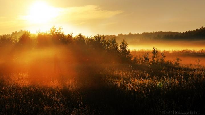 Шикарные выходные: в ближайшие три дня будет тепло и солнечно