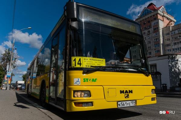 Пассажир ехал в автобусе № 14