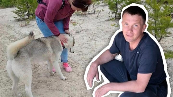 Челябинского бизнесмена, застрелившего на прогулке хаски, оштрафовали