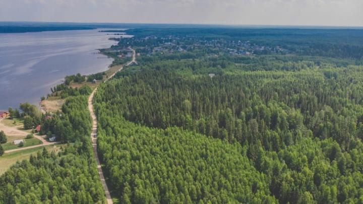 Скитались по лесу полдня: нашлись мужчина с сыном, которые заблудились под Добрянкой