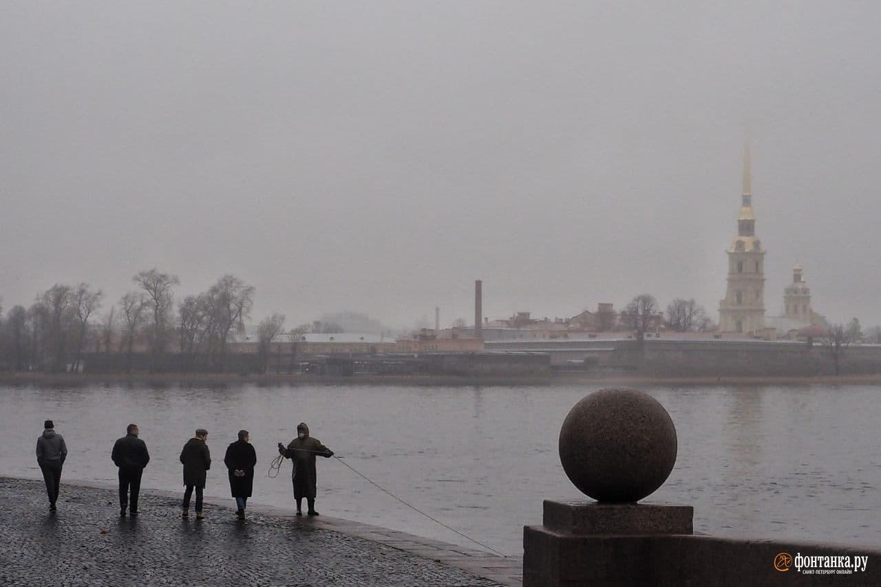 Туман в Петербурге 12 ноября. Михаил Огнев / «Фонтанка.ру»