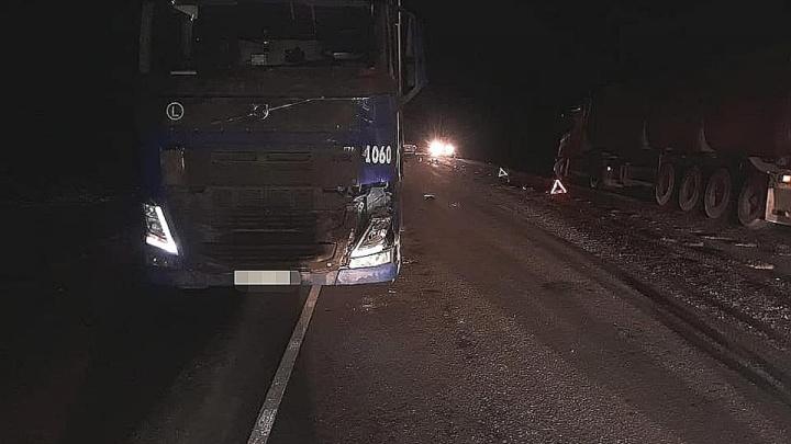 Двух мужчин сбили насмерть на трассе в Башкирии